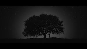 ianua short film video installation door vincenzo onnembo